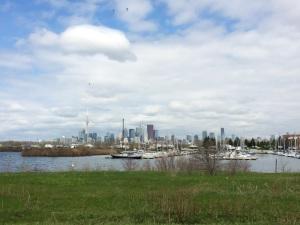 View of Skyline