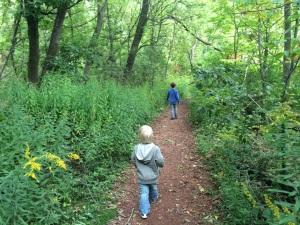 Todmorden Wildflower Preserve