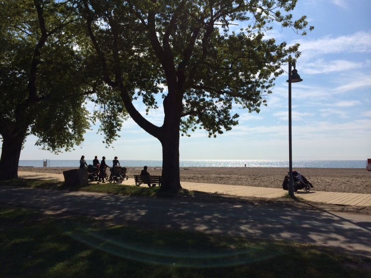 The Beach Boardwalk