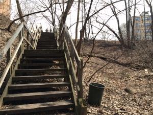 Nature Walk Toronto