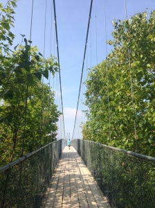 Suspension bridge.