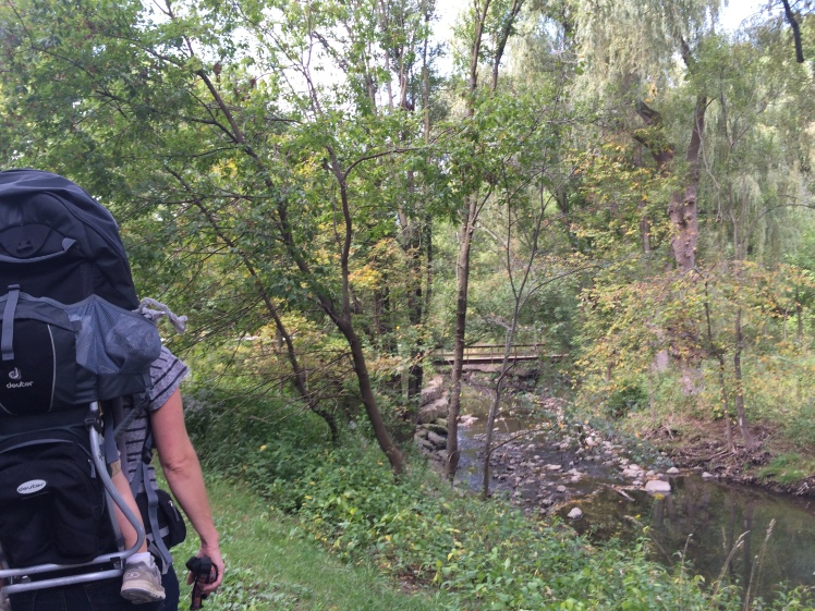 Taylor Creek Toronto