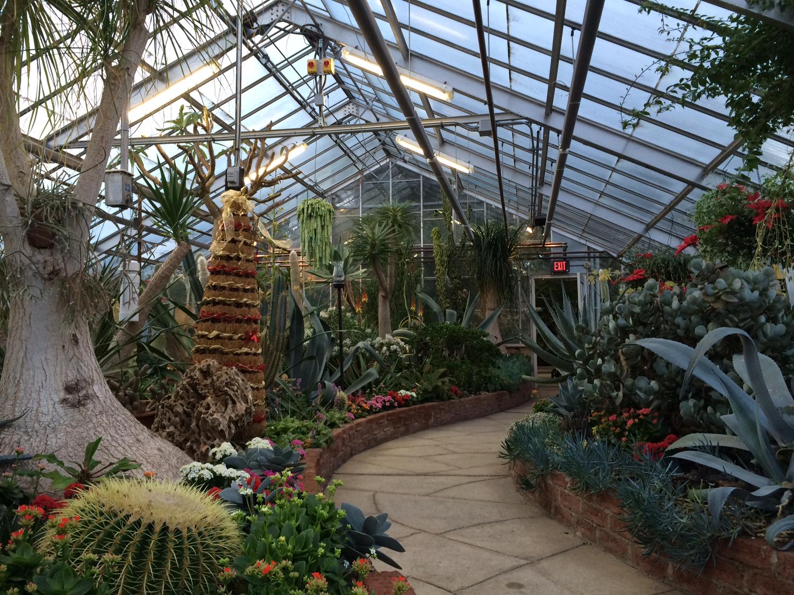 centennial park conservatory – kids in t o