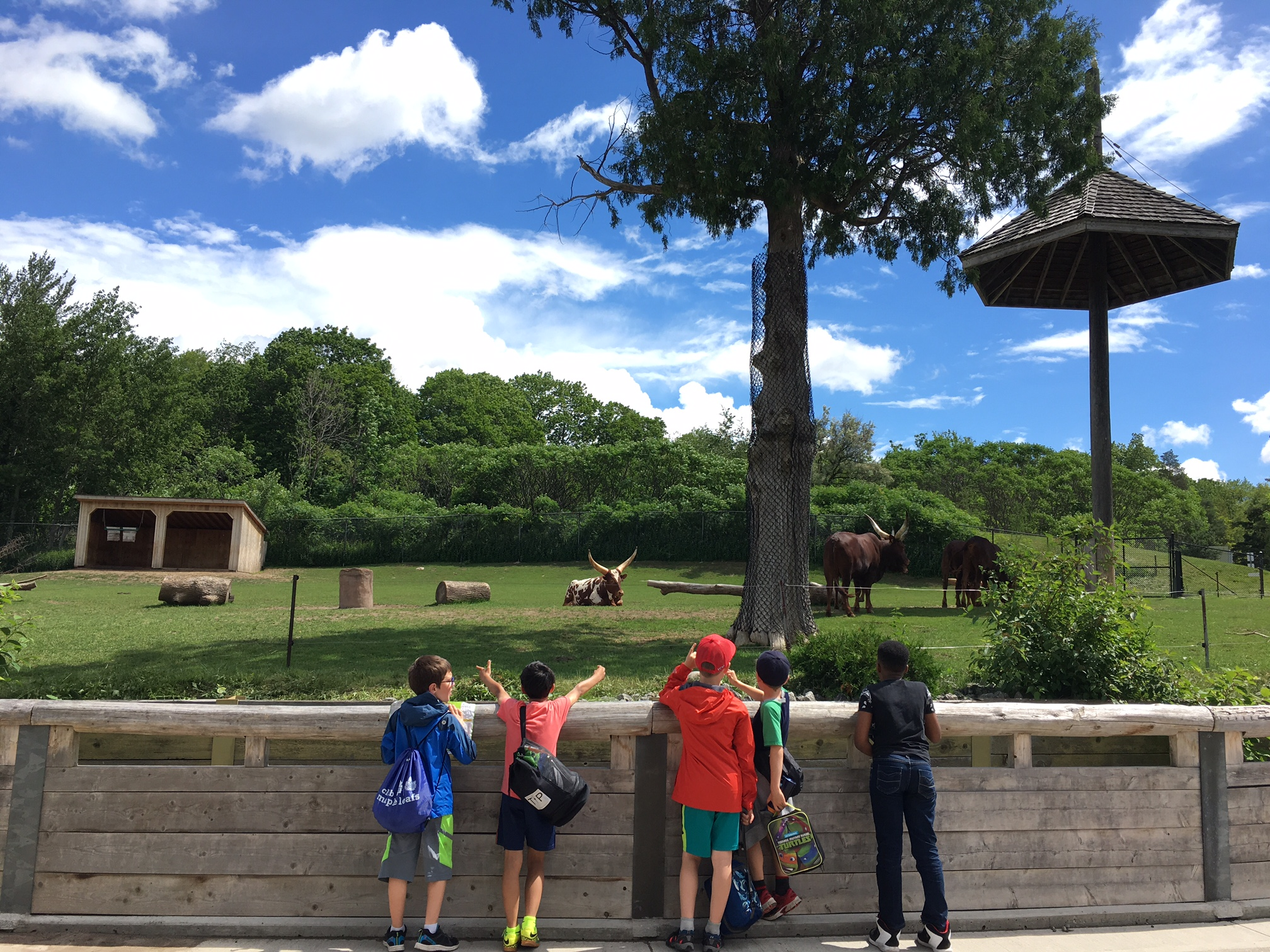 a visit to the zoo Award-winning reading solution with thousands of leveled readers, lesson plans, worksheets and assessments to teach guided reading, reading proficiency and comprehension to k-5 students.